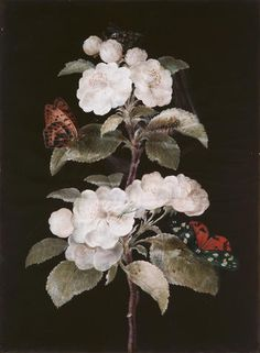 by Barbara Regina Dietzsch (Germany, 1706–1783). Bodycolour and watercolour on a prepared brown board