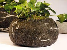 Rocking Plant: maceta en fieltro