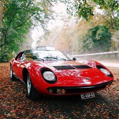 lamborghini classic cars inc Lamborghini Miura, Cool Sports Cars, Sport Cars, Cool Cars, Peugeot, Ferrari, Maserati, Porsche, Mc Laren