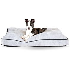 Tufted Pillow Top Pet Bed, Gray