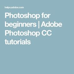 The Complete Beginners Guide To Adobe Illustrator | Tutorial ...