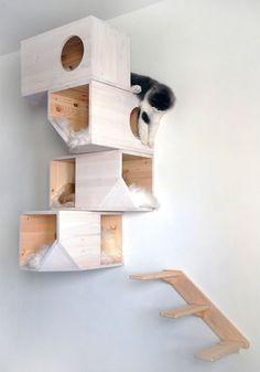 Catissa, la casa di design per gatti | Purrfect Home... Una casa a misura di gatto!