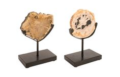 ID81732 / Petrified Slice on Stand, White