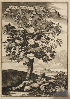 "A family tree. ""Arbor Genealogi& No& Create A Family Tree, Fine Art Prints, Canvas Prints, A4 Poster, Genealogy, Poster Size Prints, 500 Piece Puzzles, Vintage World Maps, Photo Wall Art"