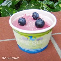 Simple, fresh, and delicious. Add a bit of lemon zest and a few fresh blueberries to our Blueberry Vanilla Wag-gurt.