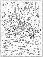 1000 images about camp on pinterest jungle animals coloring pages and animal coloring pages. Black Bedroom Furniture Sets. Home Design Ideas