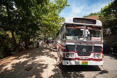 The ubiquitous Lanka Ashok Leyland Bus, Sri Lanka #SriLanka