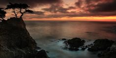 """The Lone Cypress Observes a Pebble Beach Sunset"" - by Dave Storym Carmel Ca, Sunset Beach, Pebble Beach, Big Sur, Digital Image, Lonely, Fine Art America, Sunrise, Wildlife"