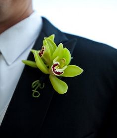 Wedding, Flowers, Green, Boutonniere, Orchids, The blue orchid