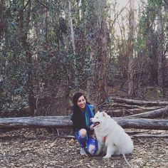 Happy girls exploring butterfly forests #happyfaces #huskysamoyed #huskiesofinstagram #nature #furrysoulmate #dogs #husky #inthetrees #california #dogsofinstagram #smiles by chelseadennis