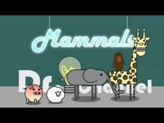 "'What are Mammals?"" Good animation and funny, but background music makes main voice track a little hard to hear"