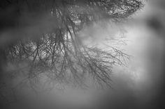 Reflected winter by Masaru Kuroda on 500px