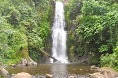 Chagga Tours - cave and waterfall