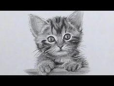 Comment dessiner un chien [Tutoriel] - YouTube