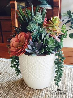 Suculentas Succulents In Containers, Cacti And Succulents, Container Plants, Planting Succulents, Planting Flowers, Succulent Gardening, Succulent Terrarium, House Plants Decor, Plant Decor