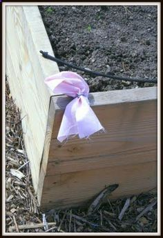 Grandma's Secret Weapons - rag is soaked in ammonia and keeps rats, raccoons, and other varmints out of the garden.