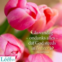 Me Quotes, Qoutes, Goeie Nag, Afrikaans Quotes, Food Wallpaper, Thank You Lord, I Am Blessed, Praise God, Note To Self
