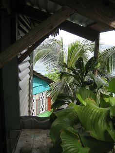 Dickies, Port Antonio