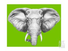 Portrait of Elephant with Glasses. Hand Drawn Illustration. Art Print by victoria_novak at Art.com