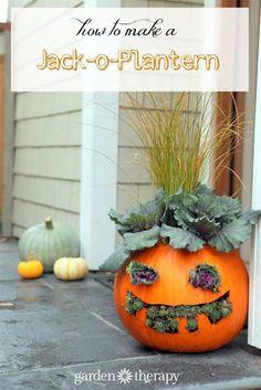 How to Make Jack-o-Planterns cute but a little creepy!