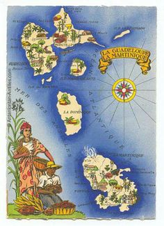 Illustrated map of Guadeloupe and Martinique. - Illustrated map of Guadeloupe and Martinique. Vintage Maps, Vintage Travel, Marie Galante, Barbados, Les Seychelles, Caribbean Restaurant, Nostalgia Art, French West Indies, Windward Islands