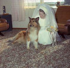 Walters, Wedding (30 August 1975)