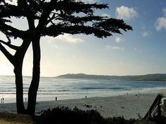 Carmel by the Sea.