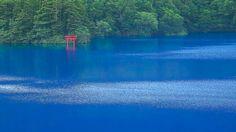 [ 4K UltraHD ]  PERFECT BLUE LAKE - 志賀高原 大沼池 -