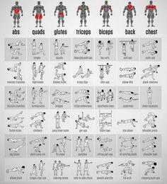 Kaslı Bir Vücut Sahibi olmak İçin Uygulanması Gereken Egzersiz Hareketleri