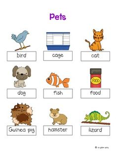 Make one special photo charms for your pets, compatible with your Pandora bracelets. Pet Themed Word Cards and Word Walls in English and Spanish Daycare Themes, Preschool Themes, Kindergarten Activities, Pet Bird Cage, Pet Vet, Nursery School, Animal Projects, Lessons For Kids, Pet Theme