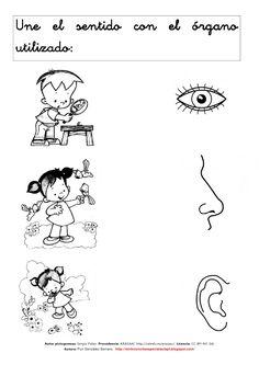 Los sentidos 1