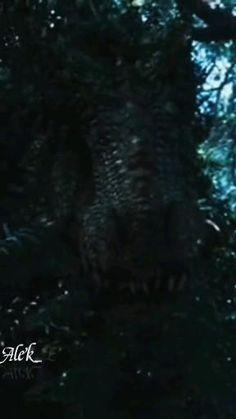 Jurassic World Videos, Jurassic Park World, World Gif, Indominus Rex, Great Memes, First World, Iron Man, Avengers, Jurassic World