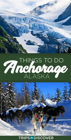 10 Best Things to Do in Anchorage, Alaska Travelers visit the city of Anchorage in search of adventure and as a launching point to see some of the… Anchorage Alaska Living, Anchorage To Denali, Seward Alaska, Living In Alaska, Alaska Summer, Alaska Winter, Alaskan Vacations, Alaskan Cruise, Alaska Travel