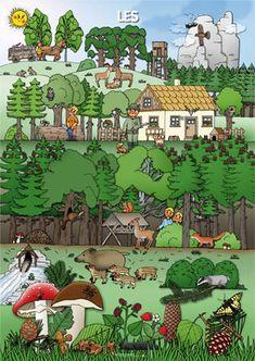 Rok – vyrabimesdetmi – album na Rajčeti Elementary Science, Comic Books, Seasons, Education, Pictures, Image, Ms, Seasons Of The Year, Classroom Routines