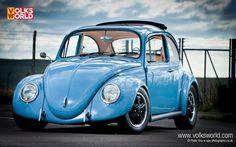 cal look beetle dechromed - Google Search