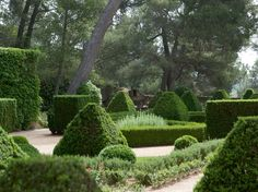 Another of the stunning gardens i visited in normandy for Caumont sur durance jardin romain