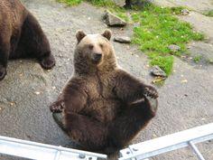 Ähtäri Zoo.