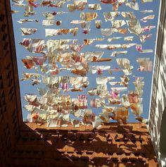 SWAYING IN THE WIND -  Museo Textil de Oaxaca
