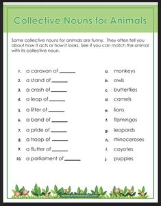 Collective nouns help improve vocabulary, use this free worksheet to plan your home learning for students Collective Nouns Worksheet, Pub Quizzes, Improve Vocabulary, Educational Websites, Home Learning, Primary School, Creative Writing, Lesson Plans, Worksheets
