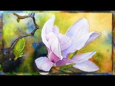 How to Paint the Magnolia Flower, Watercolor Painting, Part 1 - YouTube