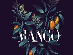Mango is from the mystery project i am putting together. Hoping to turn this into a series of posters. Love to get your thoughts.