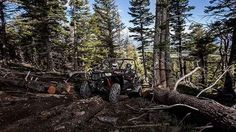 New 2017 Polaris RZR S 900 EPS ATVs For Sale in New Mexico. BLACK PEARLThe same power and capability as the RZR® S 900, plus the premium EPS package.