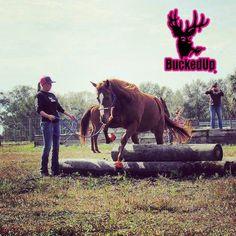 We're just horsing around.  Photo credit @mrs._alicia_tompkins  #buckedup #horses