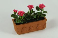 Hot Pink Geranium in Terra Cotta Planter