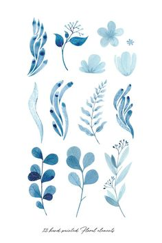 Blue Hand painted watercolor Clipart, wreaths, frames & botanical illustrations, lush foliage and florals - - Add a touch of romance to your designs with this Blue Winter Bloom- Hand painted Botanical Clipart Set! This DIGITAL file contains: Illustration Botanique, Botanical Illustration, Watercolor Illustration, Watercolor Flowers, Watercolor Paintings, Watercolour, Watercolor Artists, Abstract Paintings, Oil Paintings