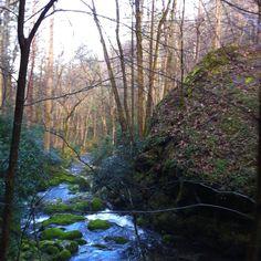 Scenic Nature Trail, Gatlinburg Smoky Mts