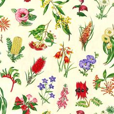 Wildflowers Australian Sturt Pea Bottlebrush Kangaroo Paw Cotton Quilting Fabric is designed for Nutex. This fabric is cotton and is approx 44 inches cm) wide. yard = cm) This fabric is sold in yard increments […] Australian Wildflowers, Australian Native Flowers, Australian Plants, Australian Animals, Australisches Tattoo, Floral Fabric, Fabric Flowers, Australian Tattoo, Native Tattoos