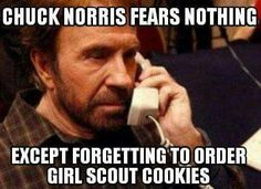 Even though I'm not a big fan of cookie season, I do enjoy making memes (just ask my service unit), and it's become somewhat of a tradition for cookie memes to make their appearance eac… Order Girl Scout Cookies, Girl Scout Cookie Meme, Girl Scout Cookies Flavors, Girl Scout Cookie Sales, Girl Scout Leader, Girl Scout Troop, Chuck Norris, Pokemon Go, Videogames