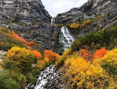 Bridal Veils Falls is located right off the highway in Provo Canyon, and it's a quick, easy day trip to see the falls surrounded by fall foliage. Utah Vacation, Easy Day, Hiking Trails, Day Trip, Veil, Trip Advisor, Waterfall, Beautiful Pictures