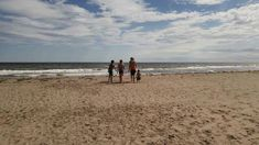 Nouveau-Brunswick Channel, Canada, Beach, Water, Outdoor, Beaches, The Beach, Seaside, The Great Outdoors